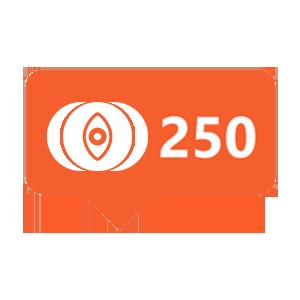 250-history-views