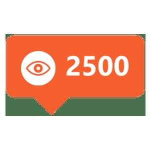 2500-views
