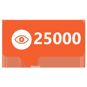 25000-views