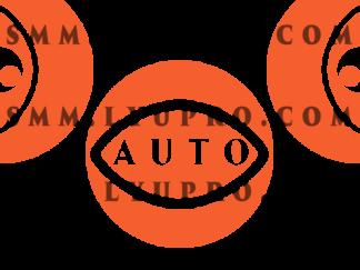 Авто-просмотры